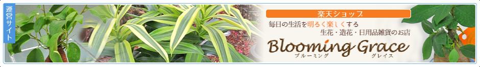楽天ショップ Blooming Grace / ブルーミンググレイス